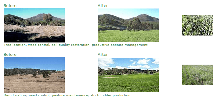 Before and After examples of our farm advisory services